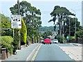 SZ5391 : High Street, Wootton by David Dixon
