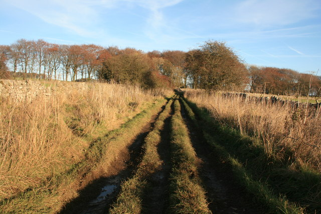 Deep ruts on Green Lane