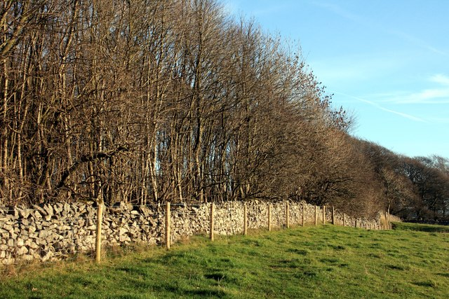 Fence, wall and wood off Green Lane
