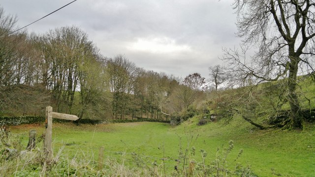 Rusden Wood