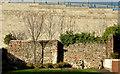 J4187 : The town wall, Carrickfergus (8) by Albert Bridge