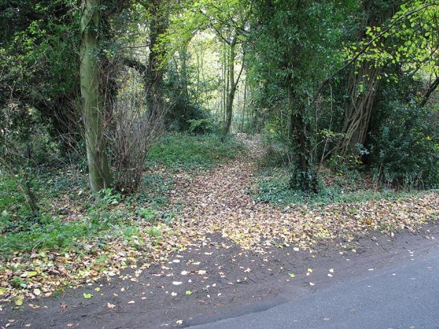 Footpath through Ringland Hills