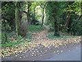 TG1312 : Footpath through Ringland Hills by Evelyn Simak