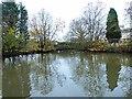NZ1773 : Duckpond by Eland Hall Farm by Oliver Dixon