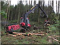 J0322 : Tree felling with heavy machinery Ballintemple Wood near Newry by Colin Park