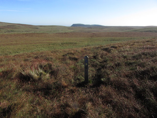 Marker post on Ulster Way and view across blanket bog to Benaughlin