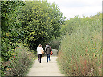 SP9314 : The Path to the Octagon Hide, College Lake, near Tring by Chris Reynolds