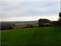 SU8214 : View east along bridleway on Chilgrove Hill by Shazz