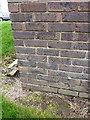 SJ6909 : OS benchmark - Malinsgate Police Station (Elec substation) by Richard Law