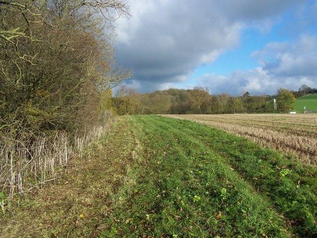 Staffordshire Way Near Sidford Wood