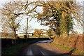 SJ5152 : Bickerton Road approaching Bickerton Hall by Jeff Buck