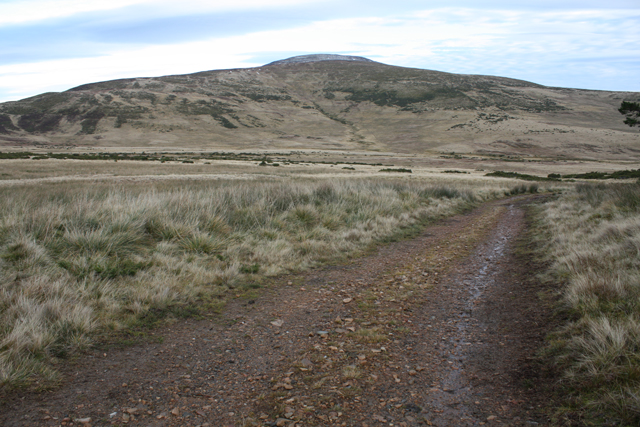 Estate track north of The Tom