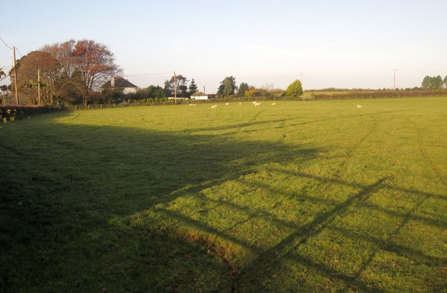 Sheep pasture, Trerulefoot