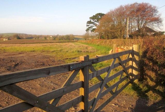 Field west of Trerulefoot