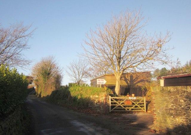 Lane at Trerulefoot