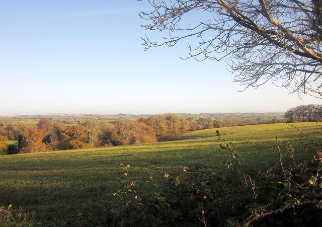 Field near Trerulefoot