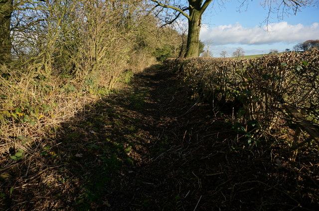 Green Lane near Common End Farm