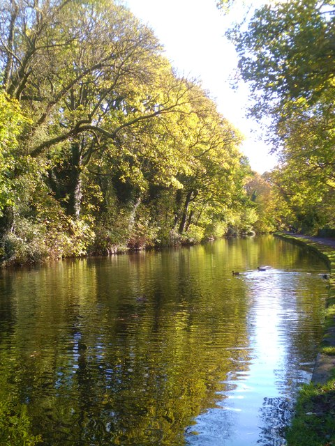 Canal scene at Bingley