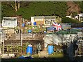 NZ2870 : Allotments on Clousden Drive, Longbenton by Oliver Dixon