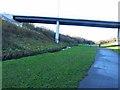 NZ3066 : Wallsend Dene by Oliver Dixon