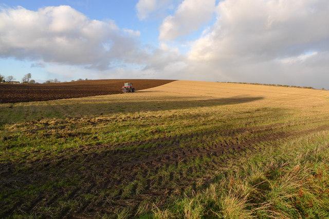 Ploughing, near Stanley