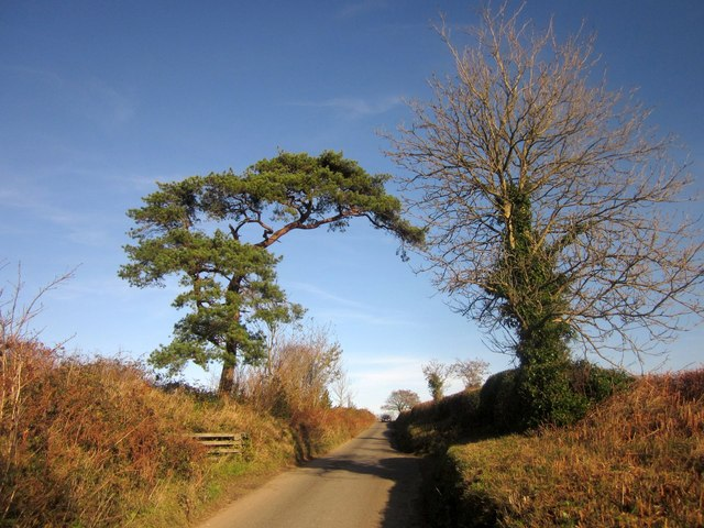 Road to Carrawcawn Cross