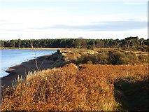NT6378 : Coast, Hedderwick by Richard Webb