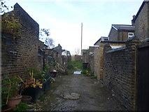 TQ2182 : A back alley in Harlesden by Marathon