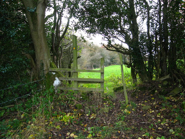 Stile between grazing fields