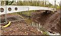 J3673 : New footbridge, Orangefield Park, Belfast (1) by Albert Bridge