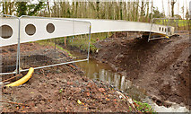 J3673 : New footbridge, Orangefield Park, Belfast (1) by Albert Bridge