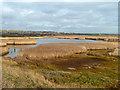 SU6803 : Farlington Marshes by Robin Webster