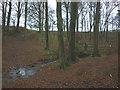 SD6739 : Footbridge in Park Wood by Karl and Ali