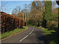 SU9347 : Beech hedge, Hook Lane by Alan Hunt
