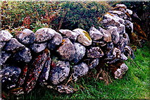 M2300 : Burren - Poulnabrone Dolmen Area - Colourful Stone Wall by Joseph Mischyshyn