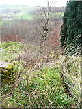 SE0023 : The top of Hebden Royd FP91 where it cuts across the bend in New Lane by Humphrey Bolton