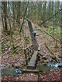SD6939 : Footbridge and wooden steps, Over Hacking Wood by Karl and Ali