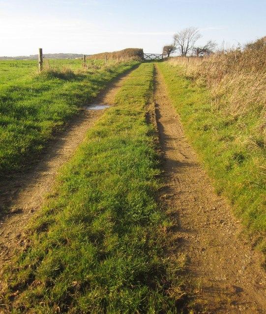 Track near Bake
