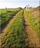 SX3257 : Track near Bake by Derek Harper