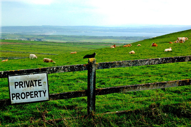 "Cliffs of Moher - Concrete Fence, ""Private Property"" Sign & Cattle grazing on Hillside,"