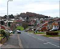 ST3090 : Suburban view along Rowan Way, Malpas, Newport by Jaggery