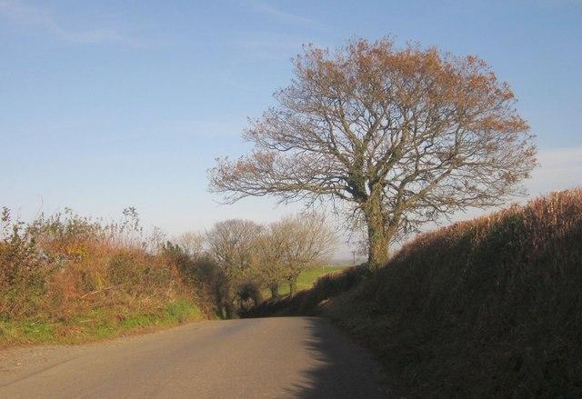 Lane to Carracawn Cross
