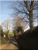 SX3257 : Lane to Carracawn Cross by Derek Harper