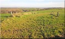 SX3257 : Cow track near Carracawn Farm by Derek Harper