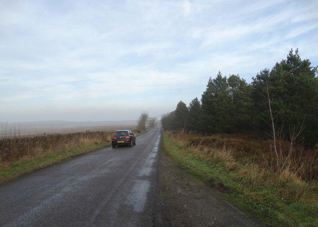 Moorland lane passing Arkwright Plantation