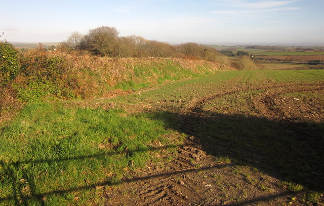 Field boundary near Bake