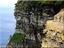 R0392 : Cliffs of Moher - Close-Up View of Face of Cliffs below O'Brien's Tower   by Joseph Mischyshyn