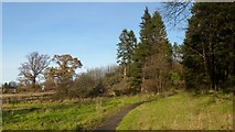 NS3977 : Path to Stirling Road by Lairich Rig