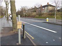 SK5802 : New pedestrian crossing along Saffron Lane by Mat Fascione