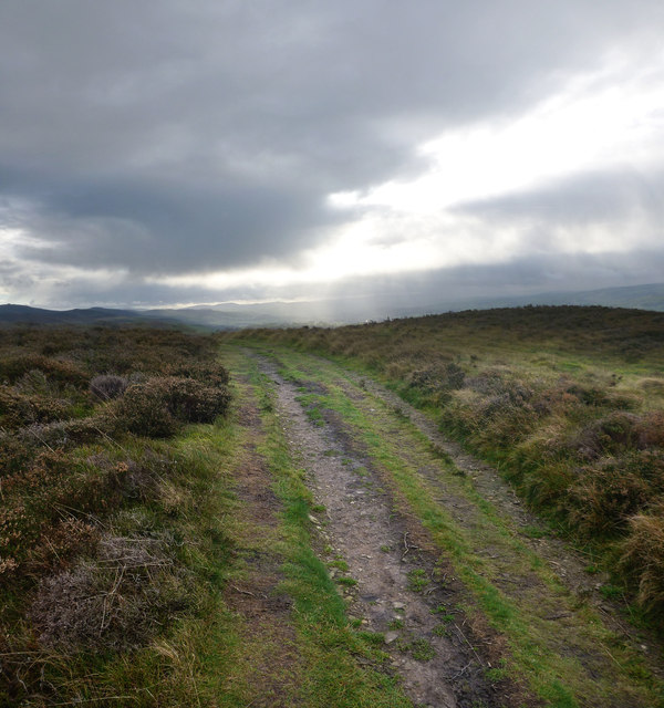Offa's Dyke path crossing Penycloddiau hill fort